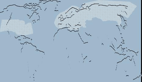 广泛覆盖国际金融市场
